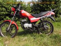Honda_MCX_80_S_HC05_rot_Chopper_original_-_wie_MT5_MT8_MB5_MB8_MB_MT_MTX_MBX_50_80_C_HD06_HC01_HC02_HC03_HC04_1