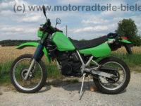 Kawasaki_KLR_250_gruen_Typ_KL_250_D_-_wie_KL_KLR_KLX_KMX_125_200_250_600_650_A_B_C_D_E_1