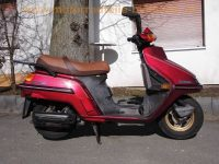 normal_Honda_CH_250_Elite_250_rot_4-Takt_Gross-Roller_-_wie_Spacy_250_CN_250_Helix_1