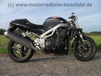 Triumph_Daytona_955i_CRASH_wie_Sprint_RS_ST_Speed_Triple_955_T_509_595_695_T509_T595_T695_1